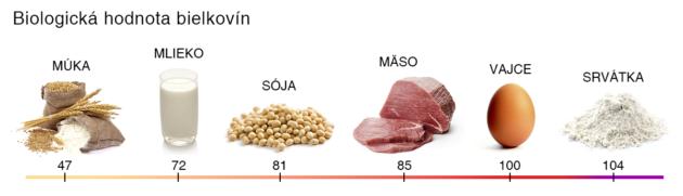 Biologické hodnoty vybraných potravín
